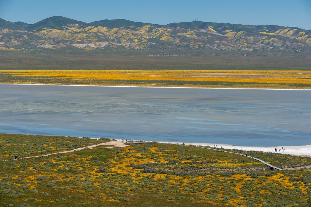 Carrizo Plain National Monument. Photo by Steve Hymon